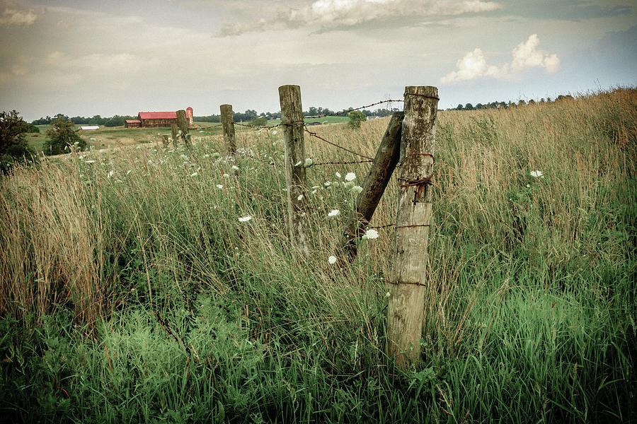 Central Kentucky Farm Photograph