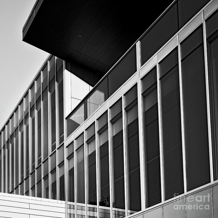 Central Library 2 by Patrick M Lynch