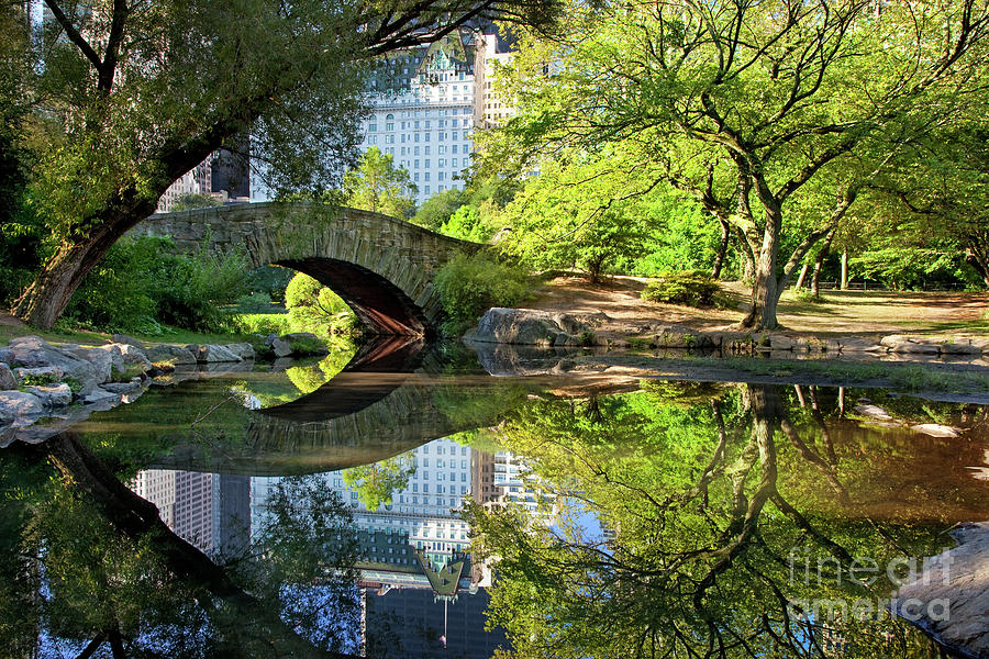 Central Park Bridge by Brian Jannsen