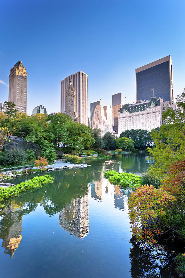 Central Park In New York City Photograph by Pawel.gaul