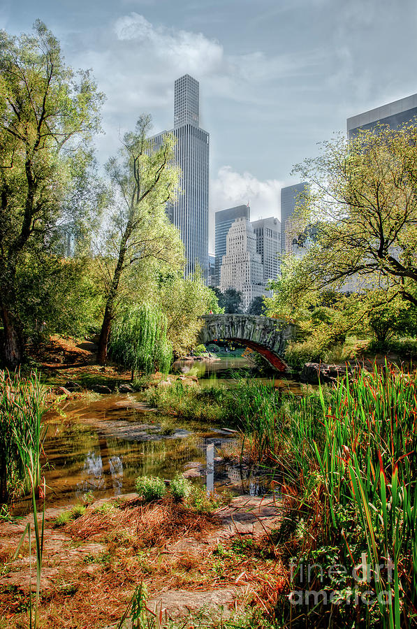 Central Park by Joseph Perno