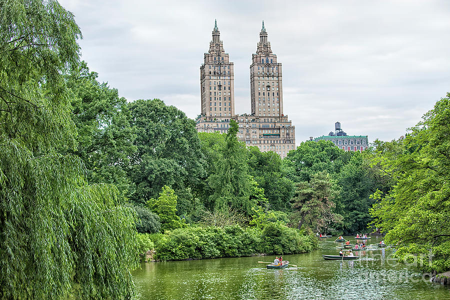 Central Park, New York, New York by Felix Lai