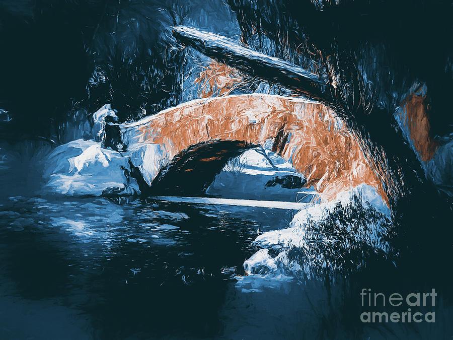 Central Park,bridge. by Andrzej Szczerski