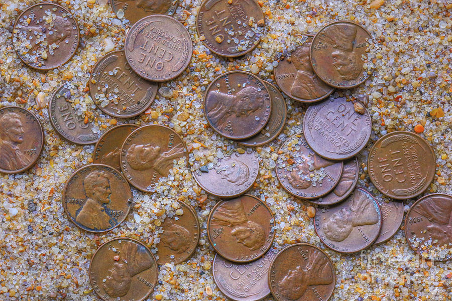 Cents on the Sand by Randy Steele