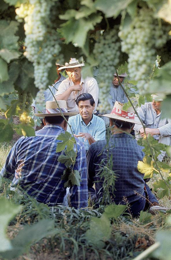 Cesar Chavez Photograph by Arthur Schatz