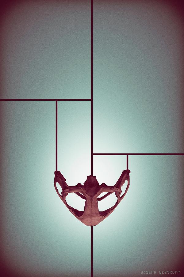 Abstract Photograph - Chalice - Abstract Geometric Bone Art by Joseph Westrupp