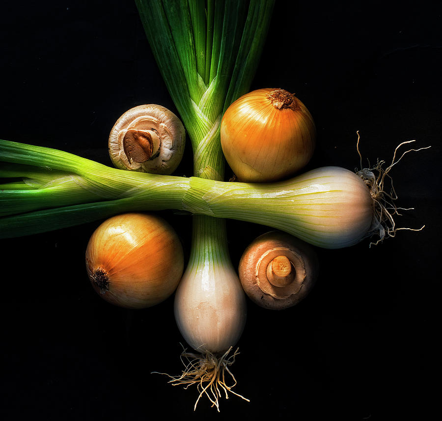 Champs And Onions Photograph by Inigo Cia