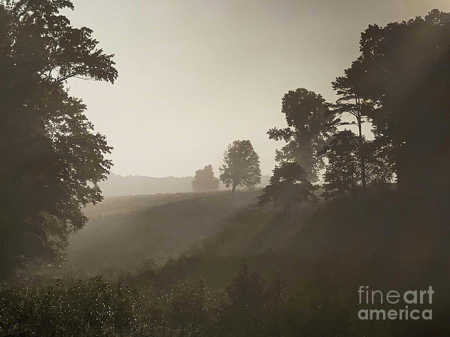 Chancellorsville Battlefield Mist At Sunrise Virginia Photograph
