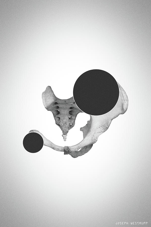 Char Abscission - Surreal Abstract Bone Collage and Circles by Joseph Westrupp