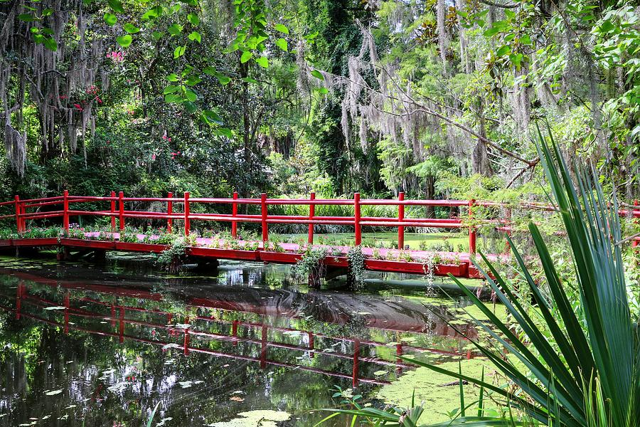 Charleston Magnolia Plantation Red Bridge by Carol Montoya