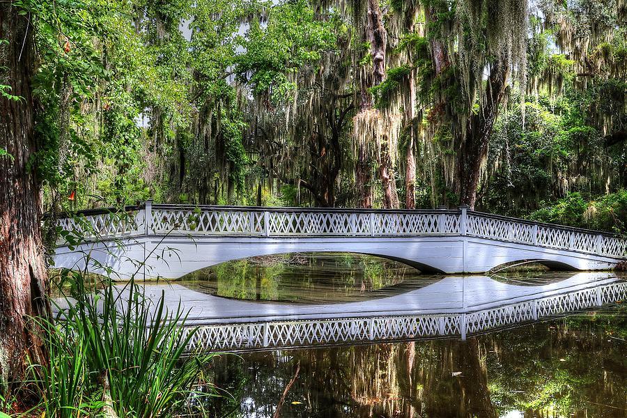 Charleston Magnolia Plantation White Lattice Bridge  by Carol Montoya