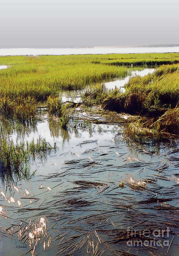 Charleston  Marsh - 2 by Linda Parker