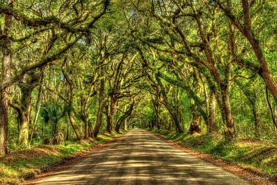 Charleston S C Majestic Shadows Edisto Island Botany Bay Road South Carolina Landscape Art Photograph By Reid Callaway