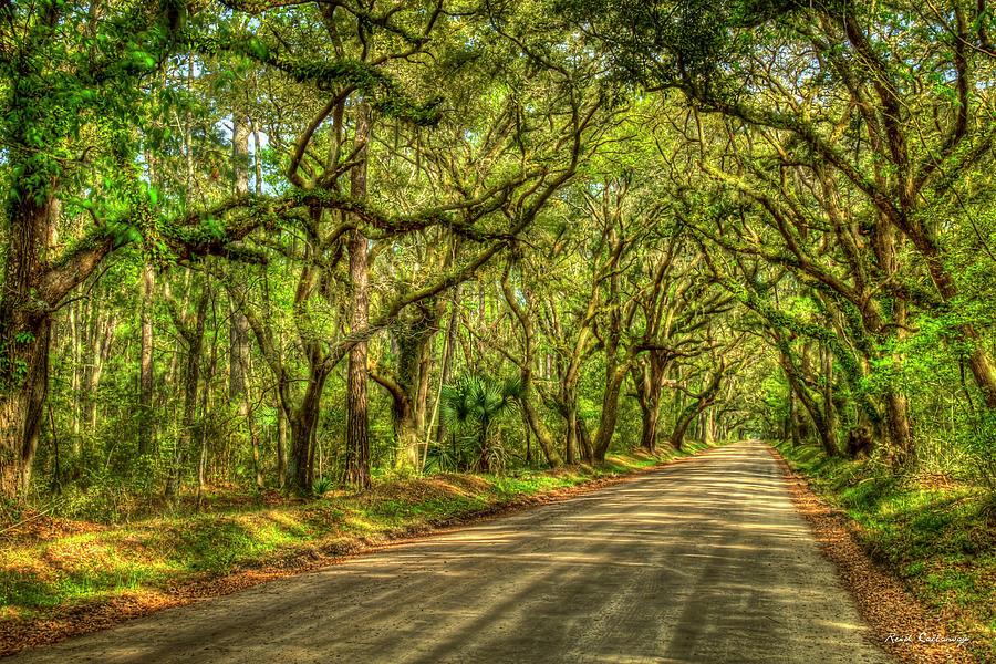Charleston S C Shadows Of Edisto Island Botany Bay Road South Carolina Landscape Art by Reid Callaway