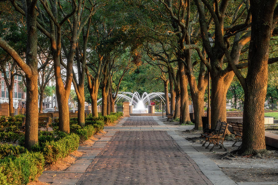 Charleston Waterfront Park Morning Glow and Fountain by Donnie Whitaker