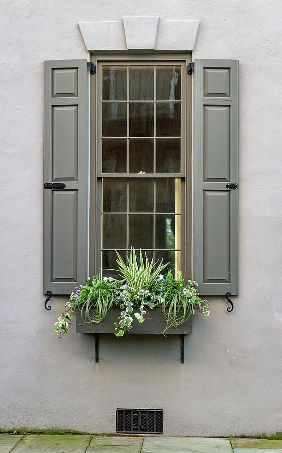 Charleston Window by Ree Reid