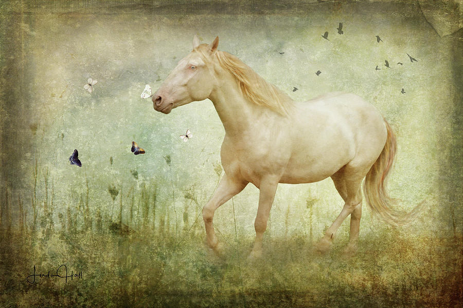 Horse Digital Art - Chasing Butterflies by Linda Lee Hall