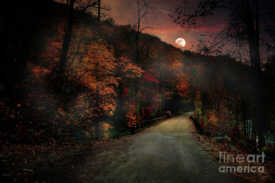 Chasing Luna by Rick Lipscomb
