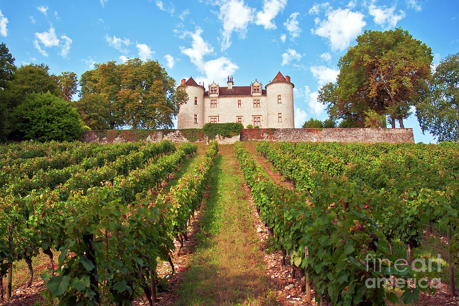 Chateau Lagrezette - France by SILVA WISCHEROPP