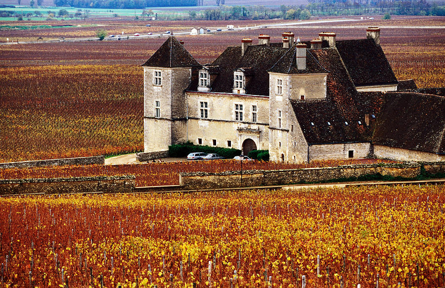 Chateau Surrounded By Vines, Burgundy Photograph by Oliver Strewe
