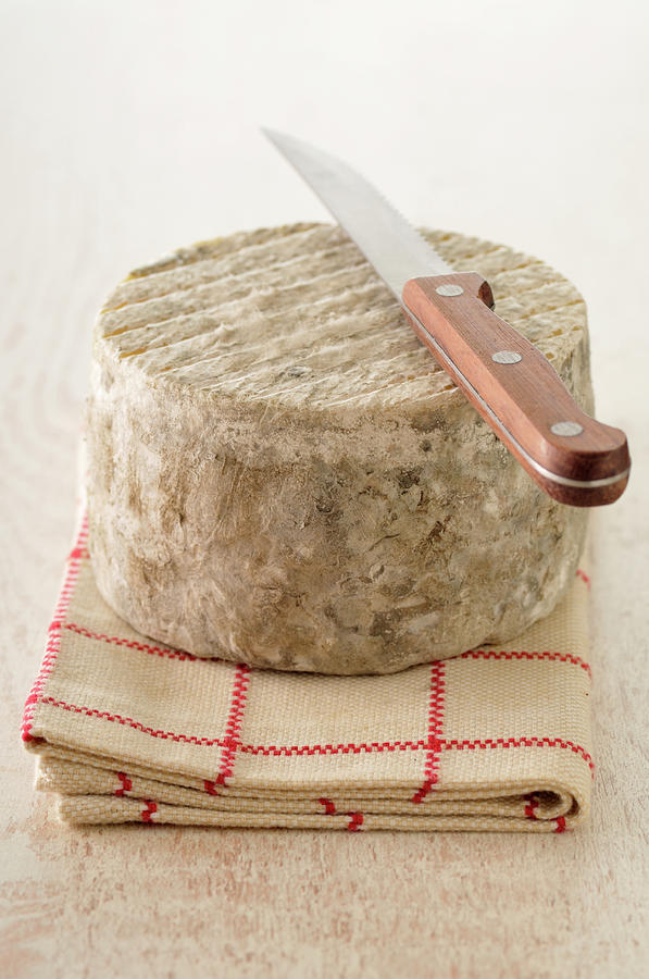 Cheese With A Knife Photograph by Riou