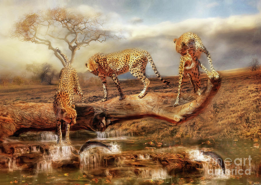Cheetah Friends by Trudi Simmonds
