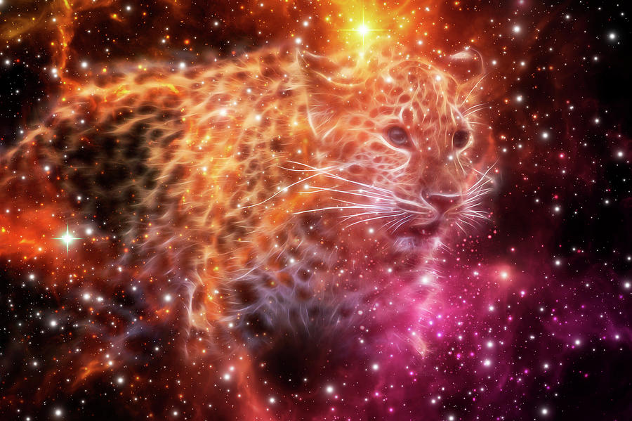 Cheetah Galaxy Art