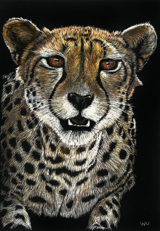 Cheetah by William Underwood