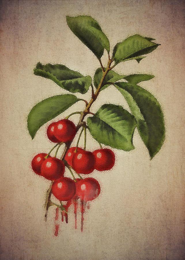 cherries by Jan Keteleer