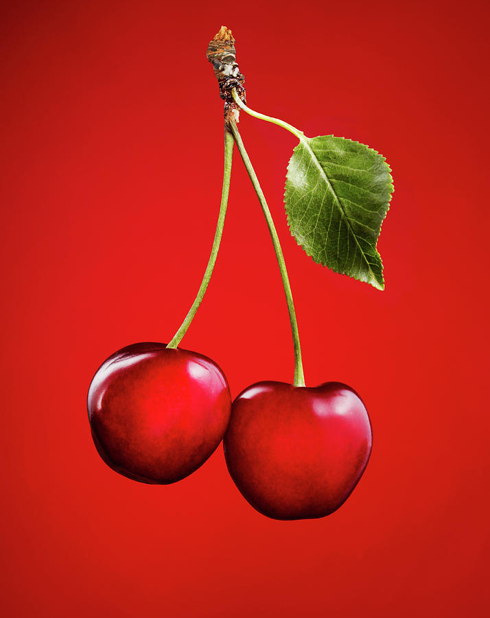 Cherries With Leaf On Red Background Photograph by Lauren Burke