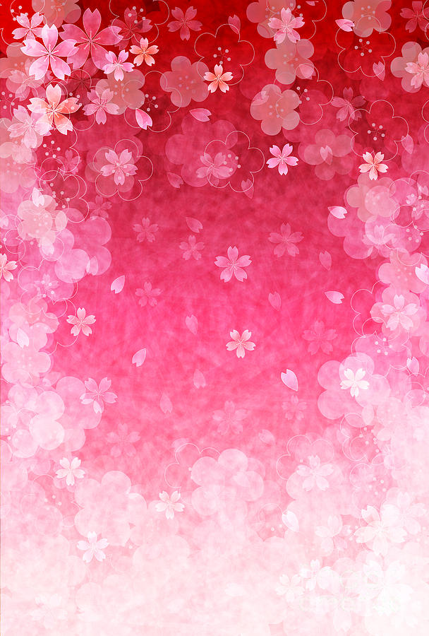 Plum Digital Art - Cherry Plum Greeting Cards by Jboy