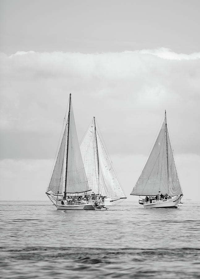 Chesapeake Bay Skipjacks by Mark Duehmig