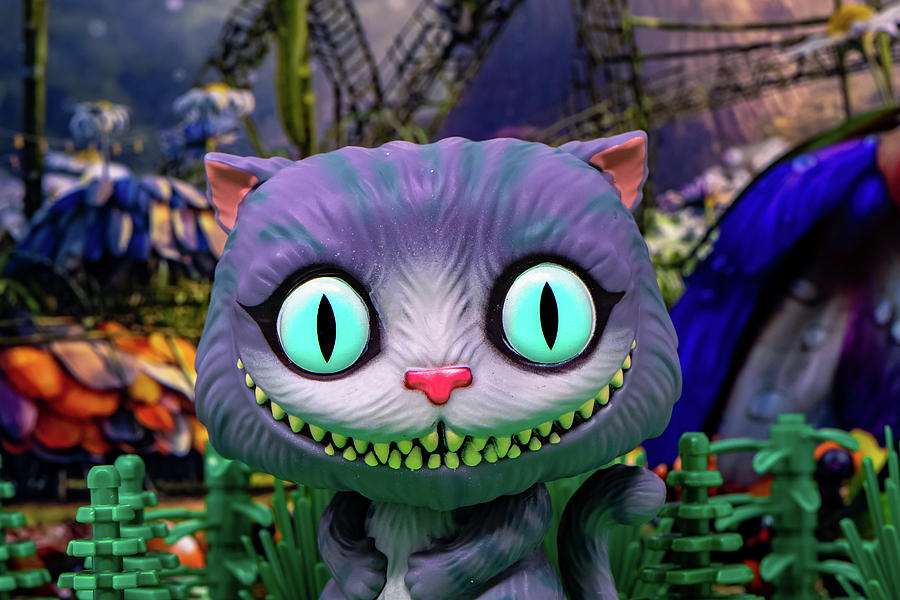 Cheshire Cat Smile by Joseph Caban
