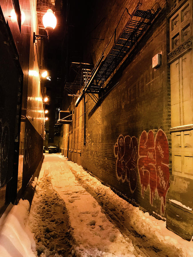 Chicago Alleyway at Night by Shane Kelly