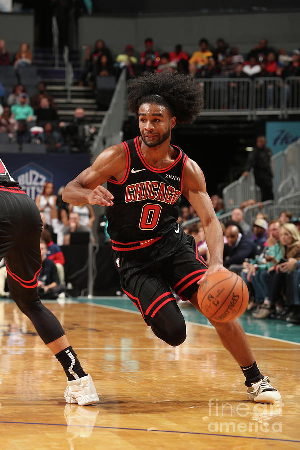 Chicago Bulls V Charlotte Hornets Photograph by Kent Smith