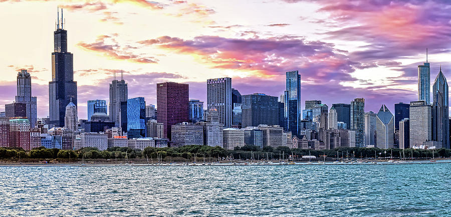 Chicago Skyline Panorama by Mitchell R Grosky