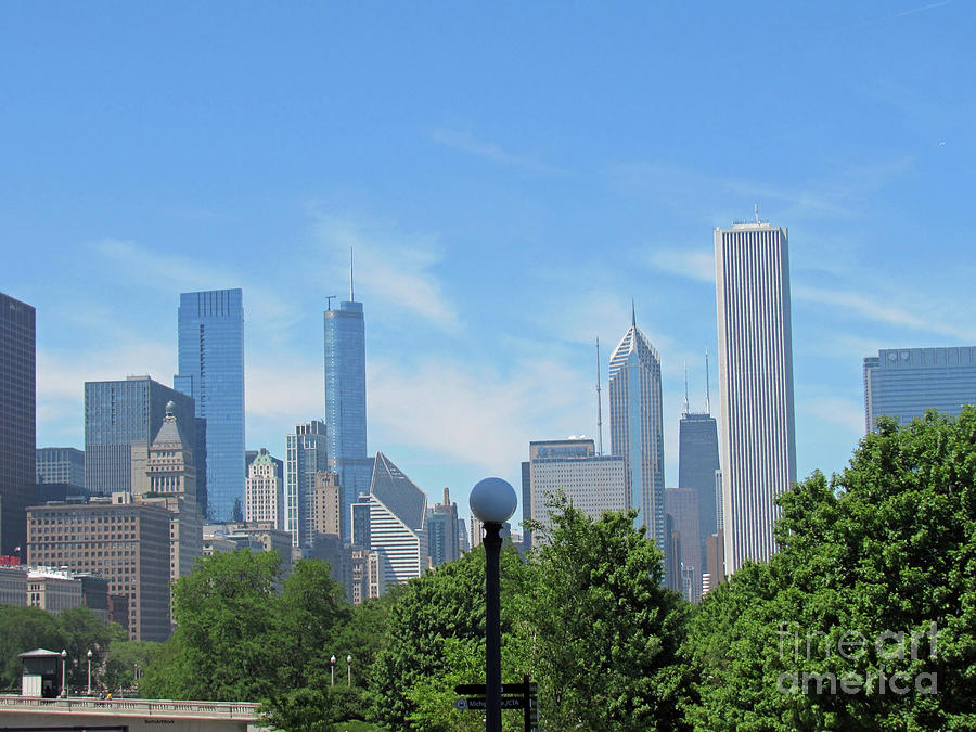 Chicago Skyline with a Wispy Sky by Roberta Byram