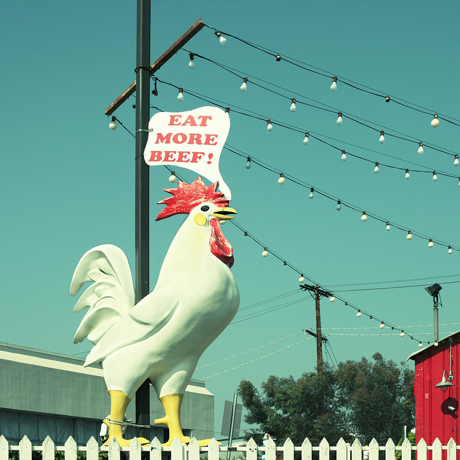 Chicken Says Eat Beef Photograph by Farukulay