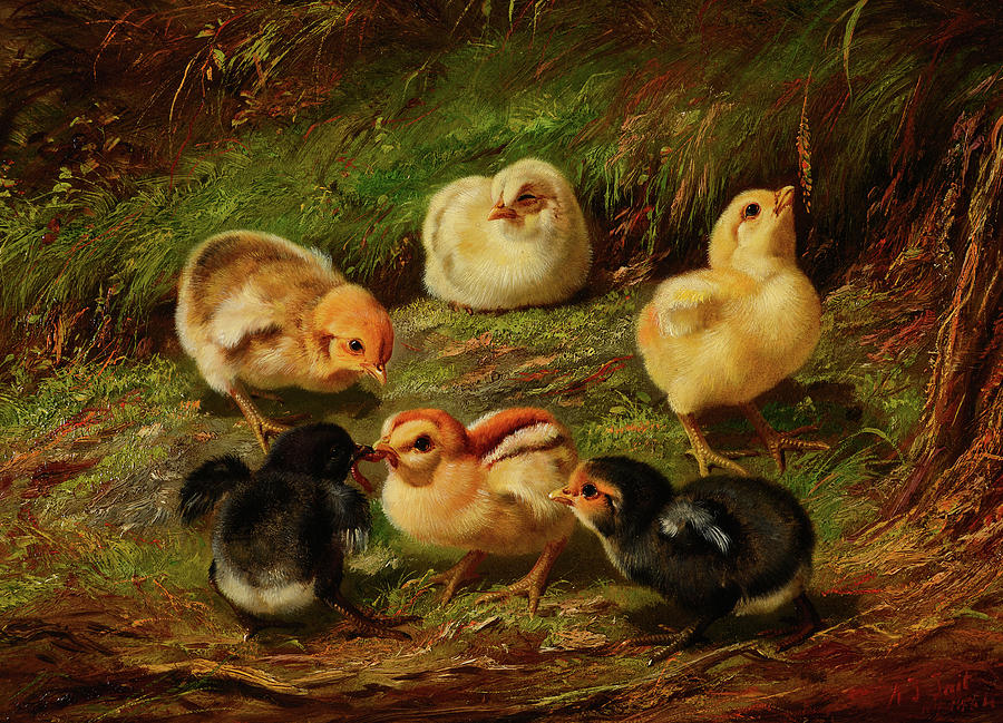 Arthur Fitzwilliam Tait Painting - Chicks, 1864 by Arthur Fitzwilliam Tait