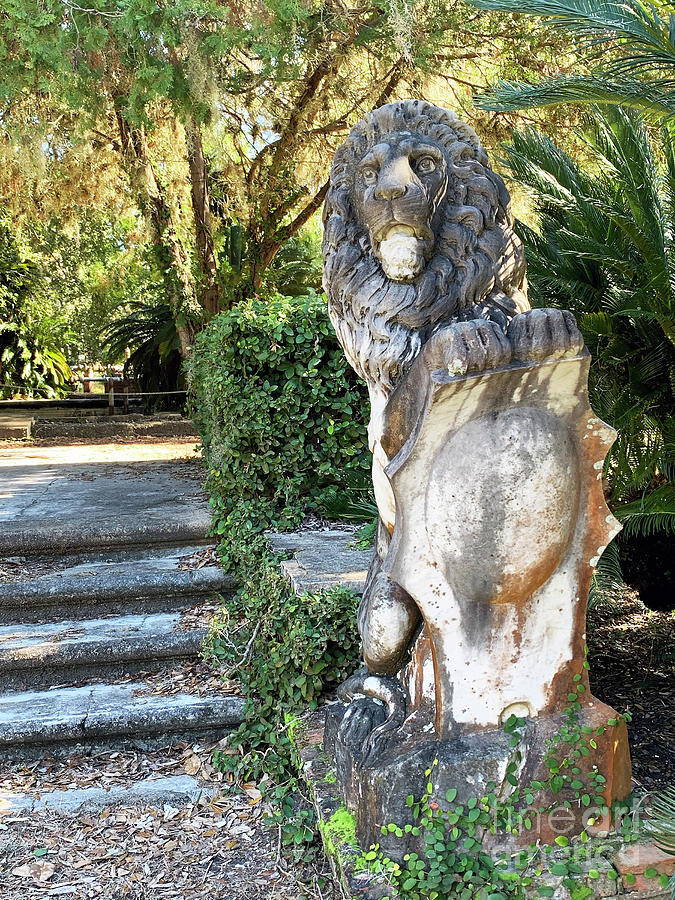 Chicota Cottage Lion by Katherine W Morse