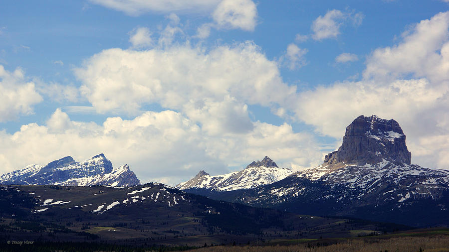 Chief Mountain, Spring, Wide View by Tracey Vivar