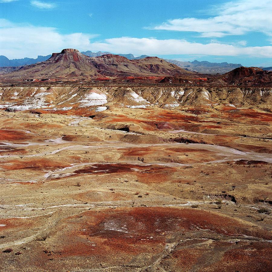 Chihuahuan Desert, Big Bend N.p Photograph by Oleg Moiseyenko