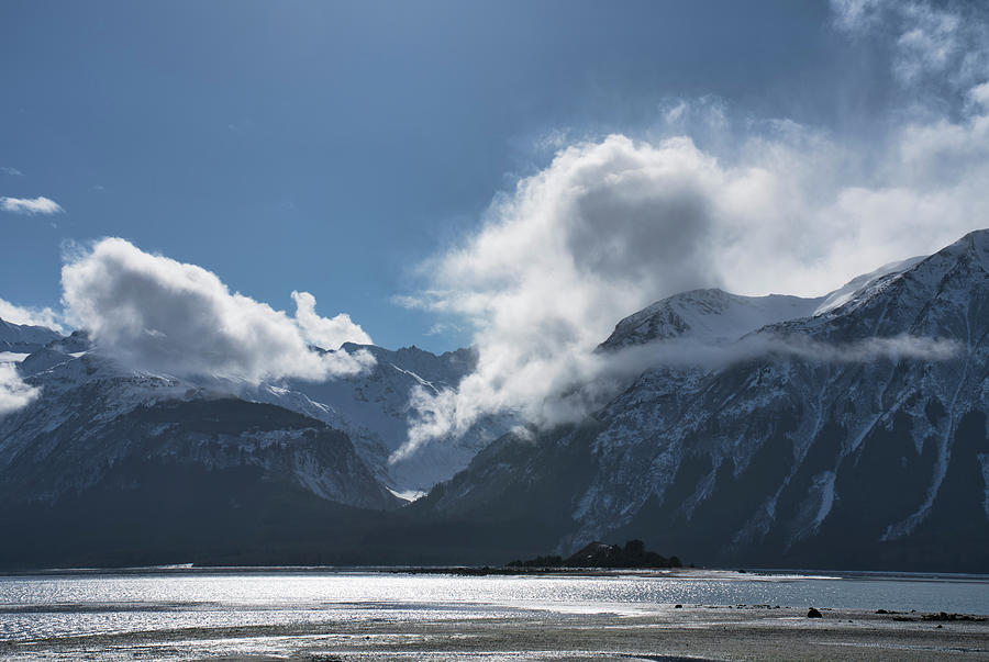 Chilkat Inlet Views by Michele Cornelius