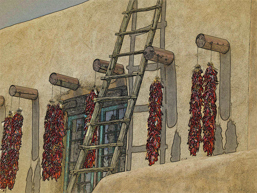 Chillies and Ladder by Western Light Graphics
