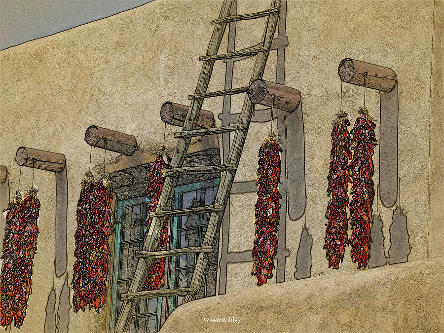 Chillies and Ladder by WiseWild57