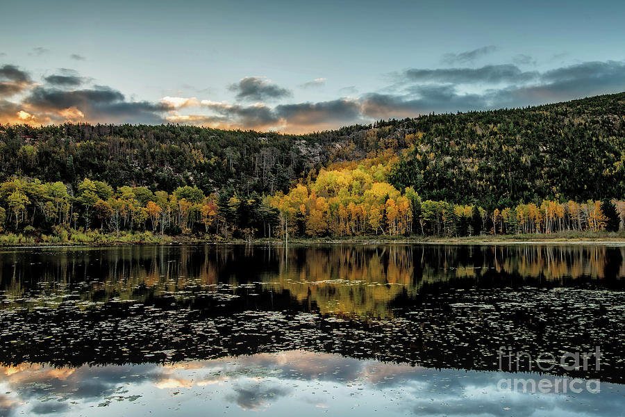 Chilly Fall Morning by Susan Garver