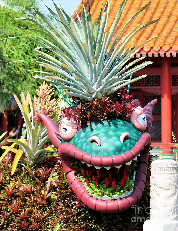 Chinese Dragon Zodiac Photograph