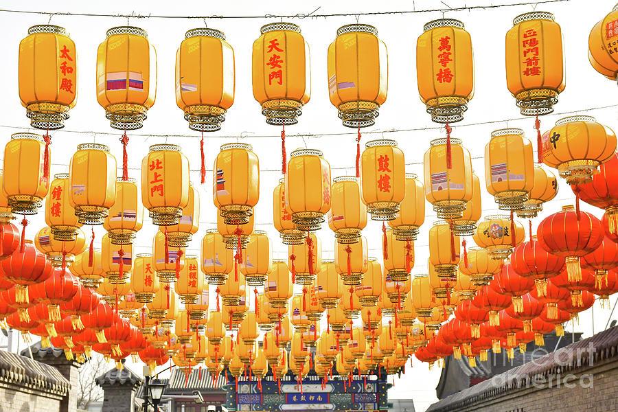 Chinese Lanterns  by Steven Liveoak