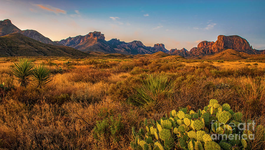 Chisos Mountains by Charles Dobbs