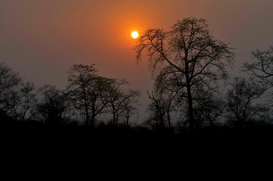 Chitwan National Park Sunset Photograph by Jim Simmen